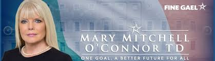 Under fire...FG Jobs Minister Mary Mitchell O'Connor